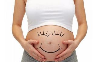 Diario Agenda De Embarazo Mama Embarazada Bebe Cuaderno Guia