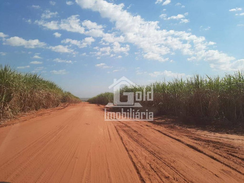 Fazenda Com 300 Alqueires, Formada,com Pastos,capacidade De 90% De Plantação De Soja Na Região De Itapeva-sp Por R$ 15.000.000,00 - Fa0163