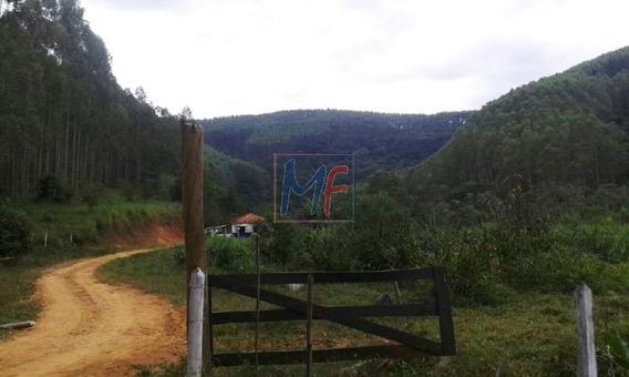 Ref 8488 Fazenda Bairro De Pinheirinho Em Tremembé Próximo A Campos Do Jordão, Com Plantação De Eucalipto - 209 Hectares. - 8488