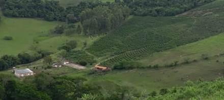 Sítio Com Café No Sul De Minas , Cidade De Lambari, Circuíto Das Águas, Com 15.000 Pés De Café, 02 Casas, Muita Água, 15 Minutos Do Centro Da Cidade. - 373