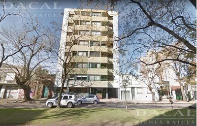 Departamento En Alquiler En La Plata Calle 66 E/ 11 Y 12 Dacal Bienes Raices