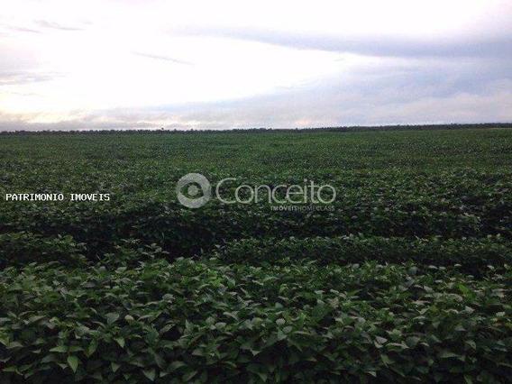 Fazenda Para Venda Em Nova Rosalândia, Fazenda Em Nova Rosalandia - To 5km Do Asfalto, 20 Km Br-153 - 7772