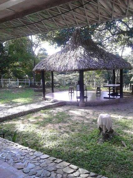 Venta De Finca En Tucuyito Ltr 390981