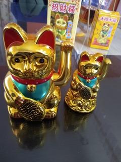 Gatos Chinos Dorados , Suerte