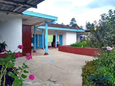 Casa-finca En Venta En La Ceja - Vereda San Gerardo-7270