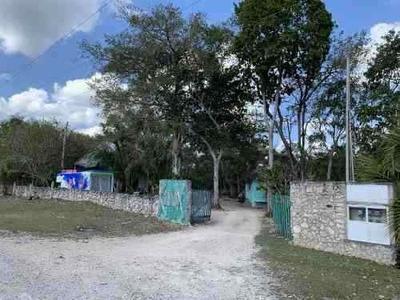 Terreno En Fracc. Koox Campestre, Sobre Carretera Tulum Coba