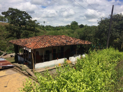 Finca En Quimbaya