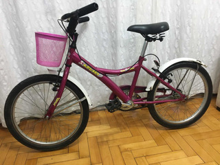 Bicicleta Nena, Rodado 20 princesa