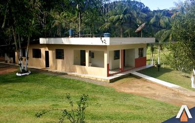 Acrc Imóveis - Sítio - Luiz Alves - Área Total 65.963m² - 02 Nascentes, Campo De Futebol - 01 Lagoa - St00037 - 34047091