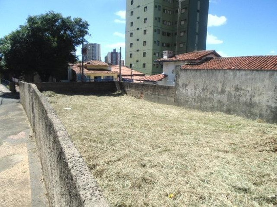 Terreno Residencial À Venda, Botafogo, Campinas. - Te0074