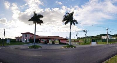 Terreno - Tomazetti, Santa Maria / Rio Grande Do Sul - 89269