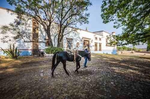Rancho Hacienda En Venta, Huichapan, Hidalgo