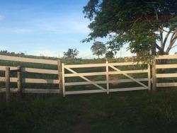 Sítio Rural À Venda, Jacuba. - Si0011