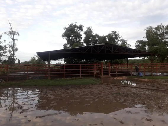 Hacienda En Venta. Troncal 19. Guasdualito - Apure.