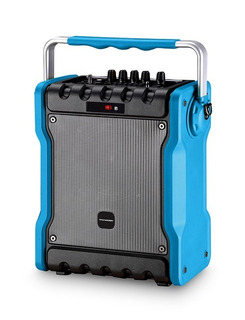 Parlante Karaoke Tgw 30w Bluetooth 1microfono Inalam Fm Usb