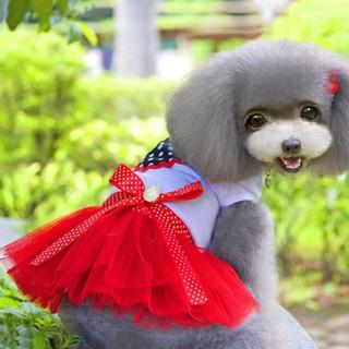 Suministro Mascota Falda Diseño Lindo Corazon Burbuja
