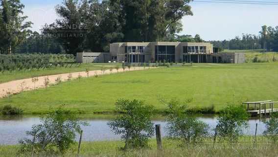 Hotel De Campo Sobre Ruta 9, Con Plantación De Olivos Y Proyecto Para Ampliación
