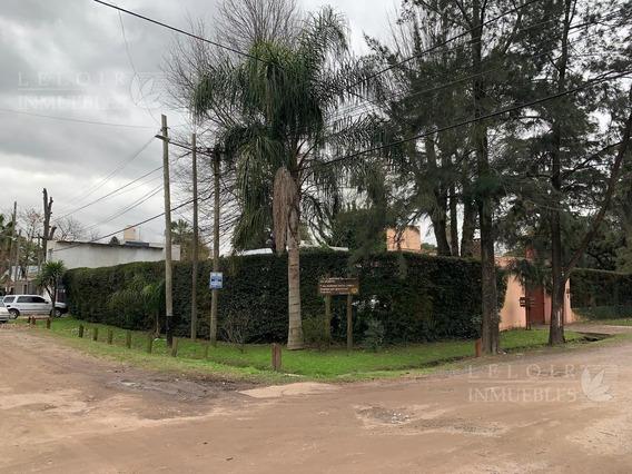 Casa - Haras Miryam