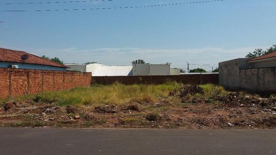Terreno Em Jardim São Braz, Birigüi/sp De 0m² À Venda Por R$ 100.000,00 - Te81926