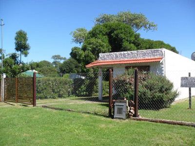 Venta 2 Casas En Terreno Propio Entrada Auto Quincho Alfar