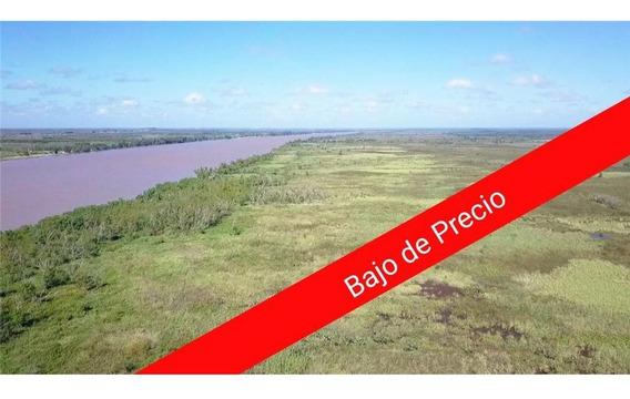 Fracción Islas Del Paraná Zárate 94 Ha 30a 30ca