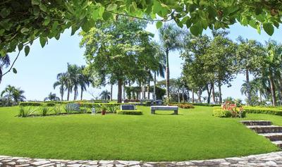 Parcela En Jardin Memorial