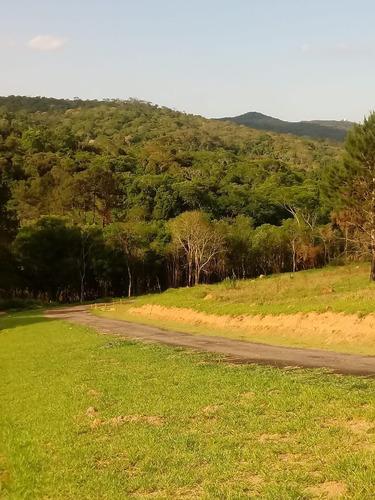 Imagem 1 de 8 de Condomínio De Chácaras Terreno 20x50 1000m2,muita Área Verde,bem Localizado,rota Do Vinho São Roque - Te00109 - 69314304