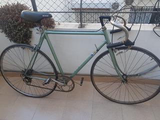 Bicicleta Media Carrera Olmo