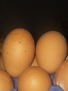 Huevo De Campo 100%