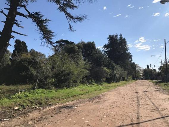 Terrenos O Lotes Venta Villa De Mayo