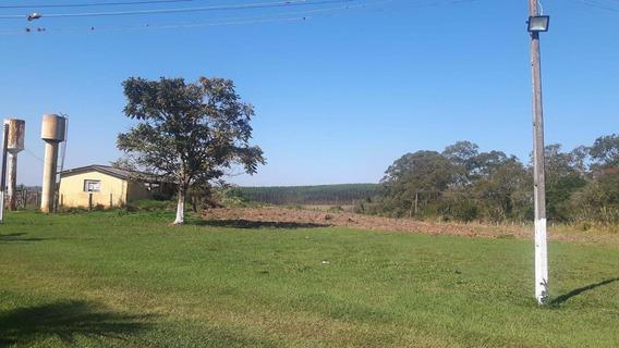 Sítio Rural À Venda, Agenor, Salto De Pirapora - Si0056. - Si0056