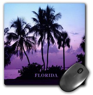 3drose Llc 8x 8x 0.25sanibel Island Florida Cielo Conv