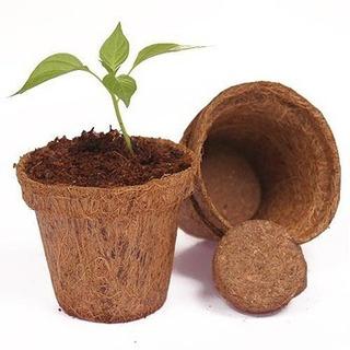 Macetas Fibra De Coco Natural Biodegradable 7pzs Medianas