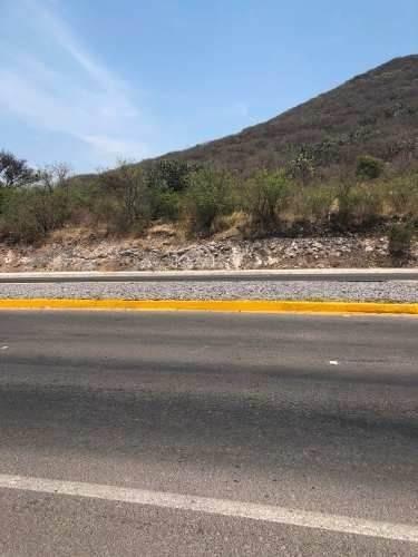 Venta Terreno Y Neg. X Carretera # 411 A Humilpan Qro. 7410m