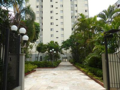 Apartamento Residencial À Venda, Vila Granada, São Paulo. - Ap0188