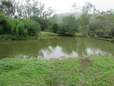 Lindo Sitio C/06 Lagos, Piscina, Casa E Caseiro, Ref: 04525