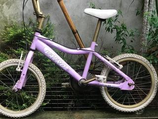 Bicicleta Vairo Rodado 16 Para Niños