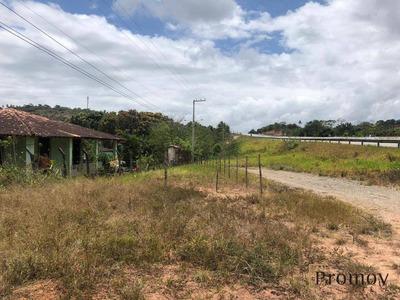 Sítio Rural À Venda, Centro, São Cristóvão. - Si0003