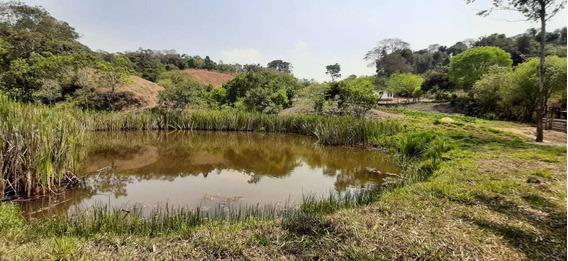 Sítio No Sul De Minas , Cidade De São Tomé Das Letras , Com 12,5 Hectares , Casa, Muita Água , Lago , Próximo A Cachoeira De Antares. - 830