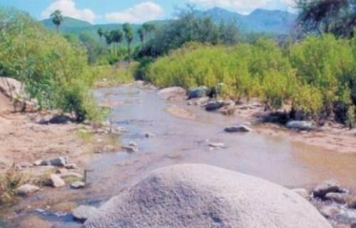 Rancho El Chucarro 385 Hectáreas Los Cabos, Bcs