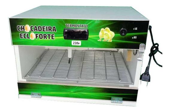 Chocadeira Automática 50 A 60 Ovos Promoçao + Brinde