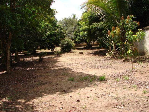 Terreno À Venda Em Parque Xangrilá - Te001119