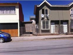 Arauco 3174