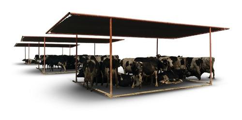 Media Sombra Para Vacas