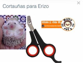Corta Uñas En U Especial Para Erizo Erizos Cuyo Conejo Huron