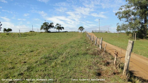 Área Rural Para Venda Em Mariana Pimentel, Boqueirão - 1153_1-779115