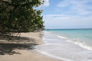 Terreno En Samana Republica Dominicana Con Playa