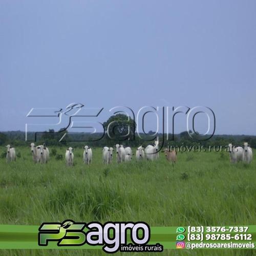 Imagem 1 de 10 de Fazenda À Venda, 83.848 Hectares Por R$ 280.000.000 - Zona Rural - São Felix Do Araguaia/mt - Fa0181