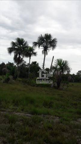 Imagem 1 de 3 de Fazenda À Venda, 1035 Hectares Por R$ 3.800.000 - Zona Rural - Mateiros/to - Fa0161