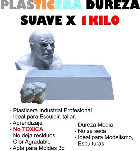Plasticera Industrial Suave Profesional X 1 Kilo Esculturas